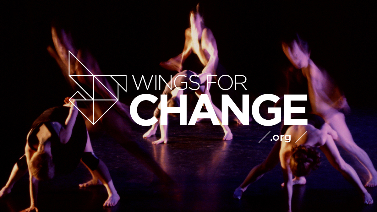 RedBull Wings for Change brand